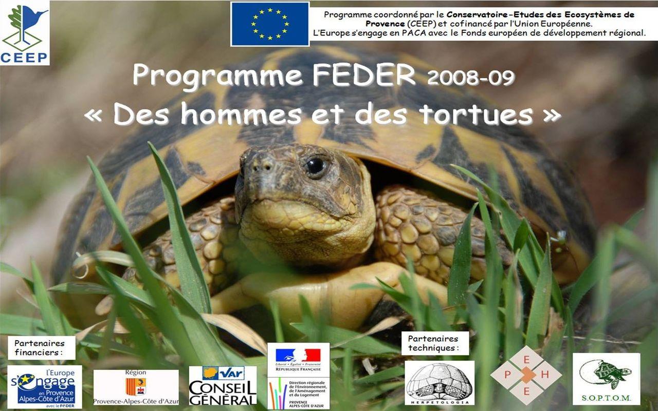 Life_tortue_hermann_113_programme_FEDER.jpg
