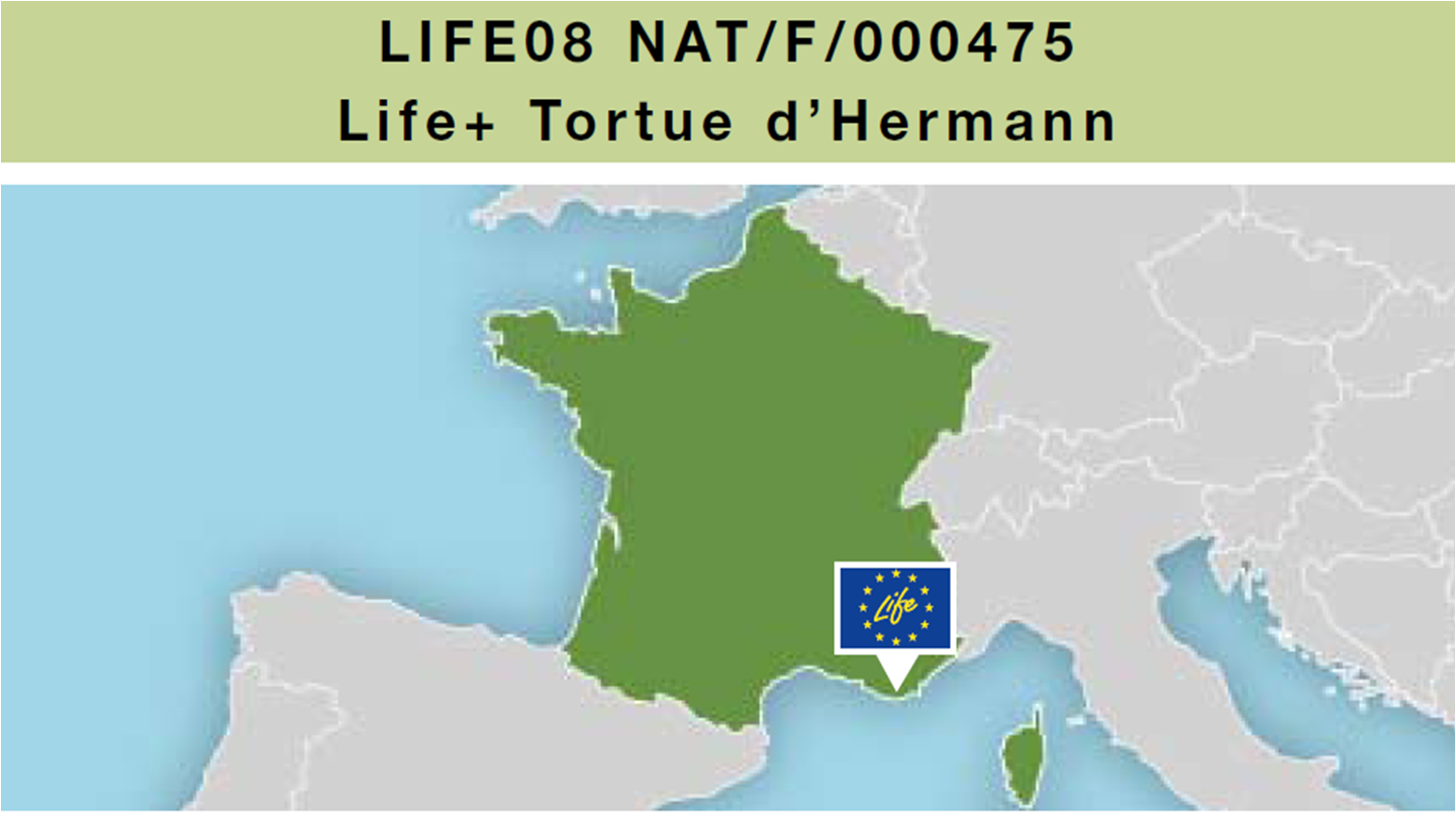 Life_tortue_hermann_119_Life_montage.png