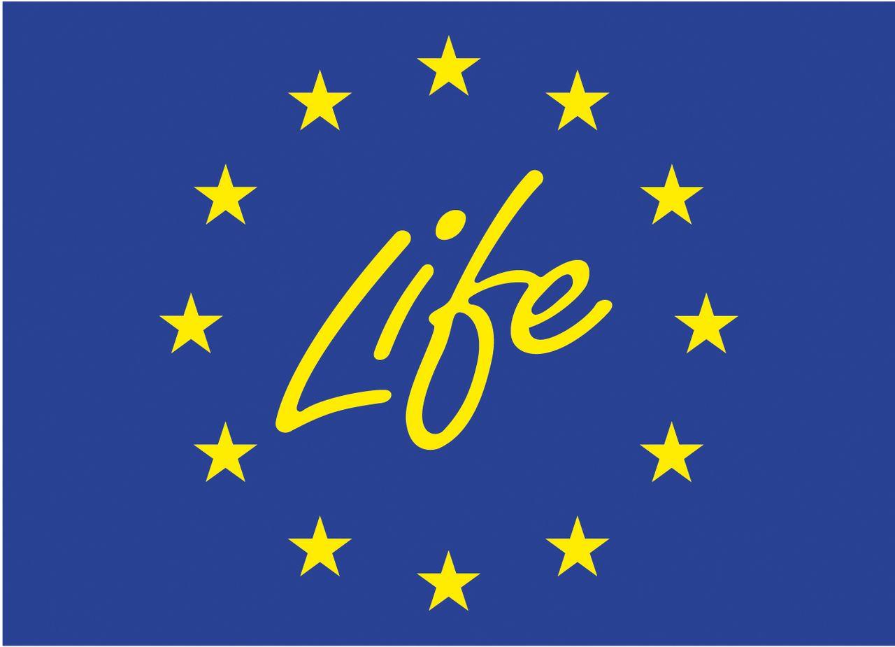 Life_tortue_hermann_171_logo_Life.jpg