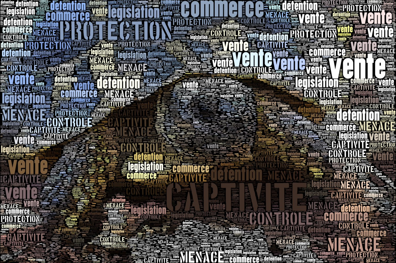 wordfoto_reglementation.jpg